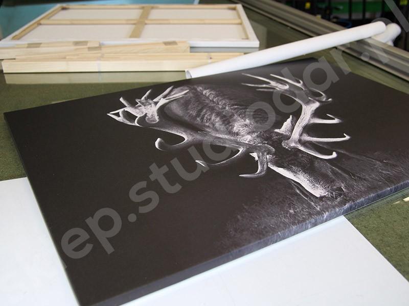 W Ultra Druk na płótnie Canvas - drukowane obrazy | Drukarnia internetowa WW57